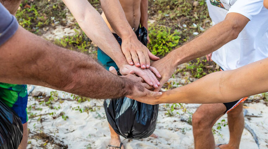Windsurfers Doing A Beach Clean Up